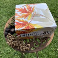 SOTHYS Box – die Herbst Edition
